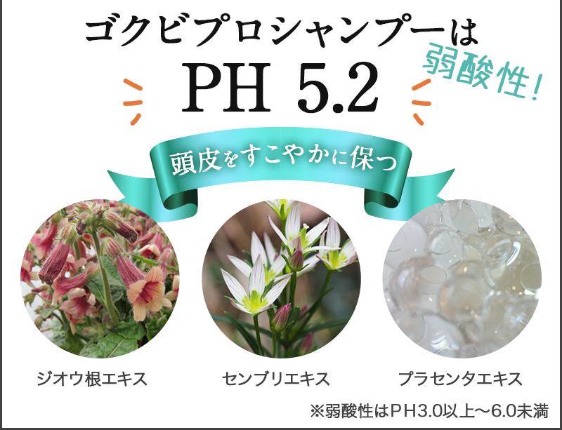 ゴクビプロシャンプーはPH 5.2