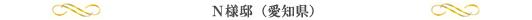 N様邸(愛知県)