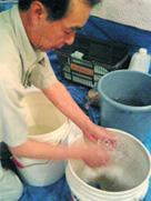 シャンデリアの洗浄